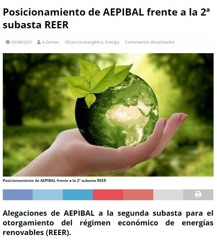 Posicionamiento AEPIBAL subasta REER EFIKOS